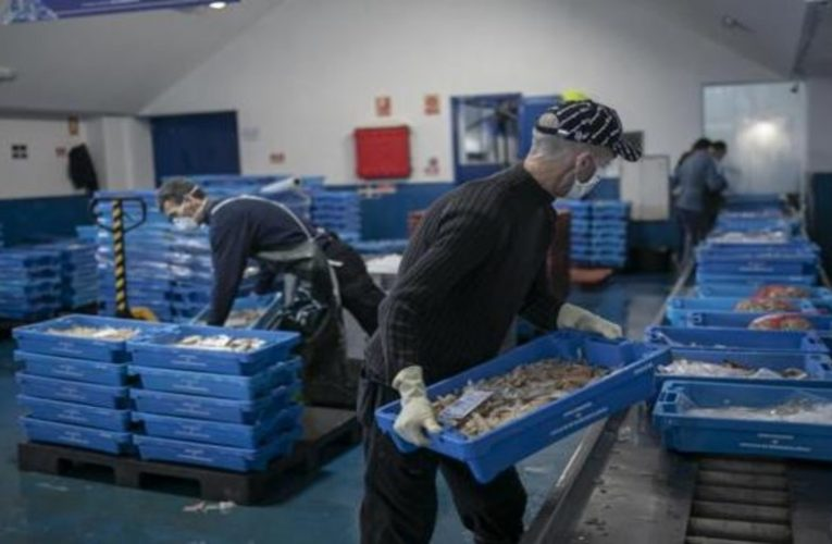 The fishing sector shows doubts about the setting of production costs and the binding nature of contracts