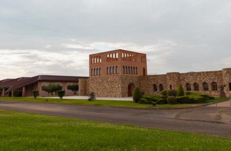 Three towns in Zaragoza with excellent wineries and the eternal memory of Goya