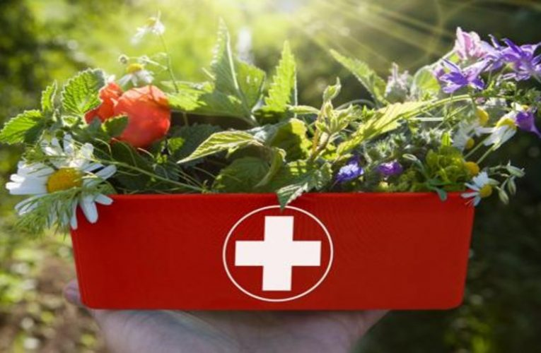The 10 essential natural products in your summer medicine cabinet