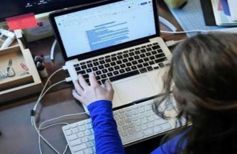 81% of Spaniards already surf the internet several times a day