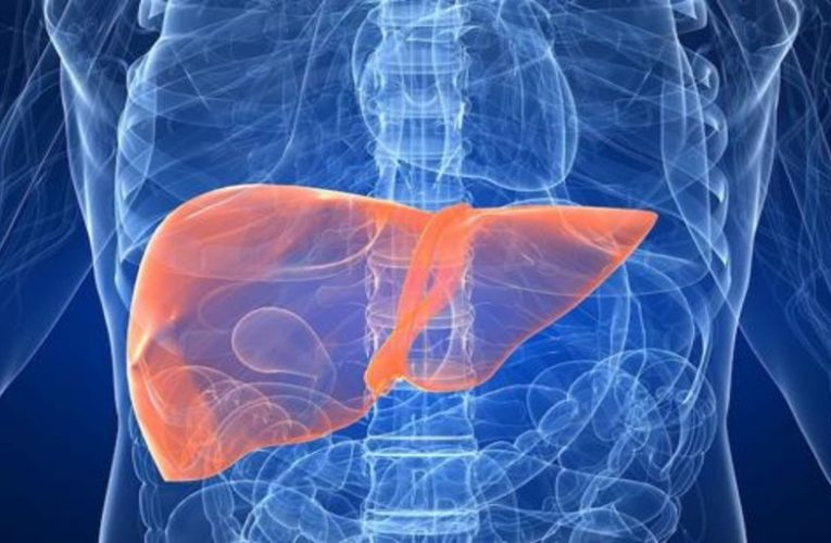 Good cholesterol can protect the liver